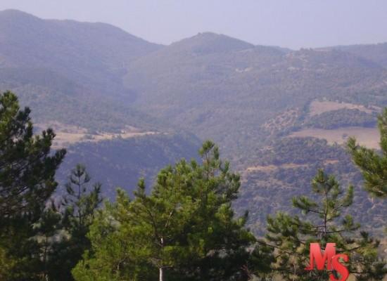 Земельный участок на трассе София-Афины