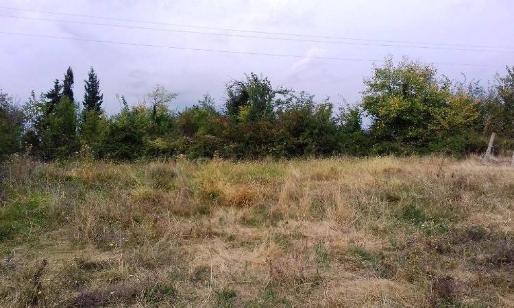 Продажа участка в поселке Дербере, Сандански