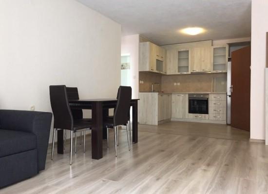 Большая двухкомнатная квартира в аренду в Сандански